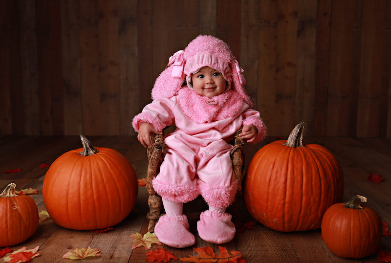 Baby dressed up as pink poodle